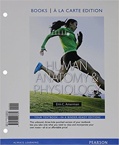 Human Anatomy & Physiology, Erin C. Amerman Test Bank - Buy ...