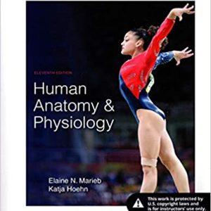Human Anatomy & Physiology, 11th Edition Elaine N. Marieb, Katja Hoehn Test Bank